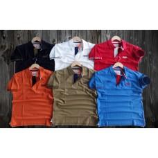 T-Shirt_Casual_Half Sleeve_Plain_Collar